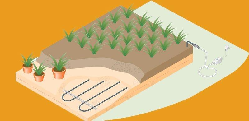 Soil Warming System